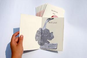 """Il millepezzi"" di Pulcinoelefante"