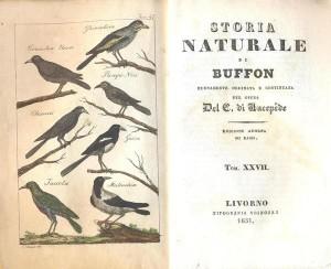 Il frontespizio di una edizione italiana dell'opera