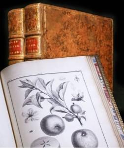 Il trattato sugli alberi e la frutta